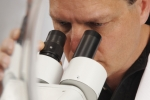 viewing the microscope
