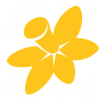 Cancer Council NSW: Consumer Training
